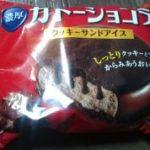 ガトーショコラクッキーサンドアイス(グリコ)を食べた感想!カロリーは?